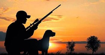 Avcılık